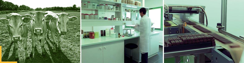 Laboratoire et chaine de production - Nuviline