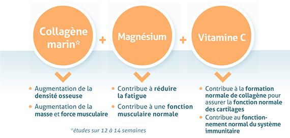 3 ingrédients bioactifs