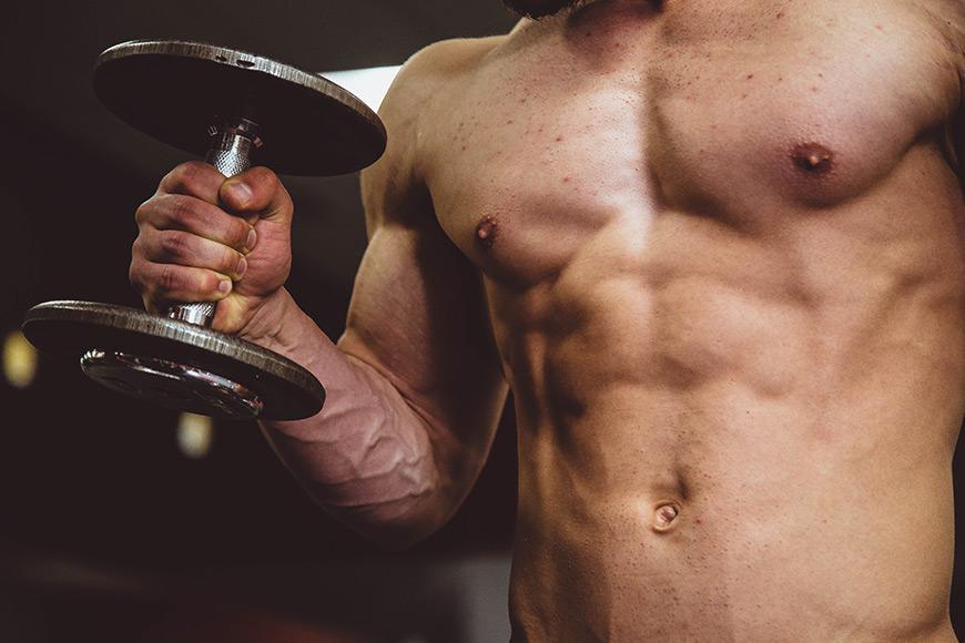 Musculation et protéines végétales